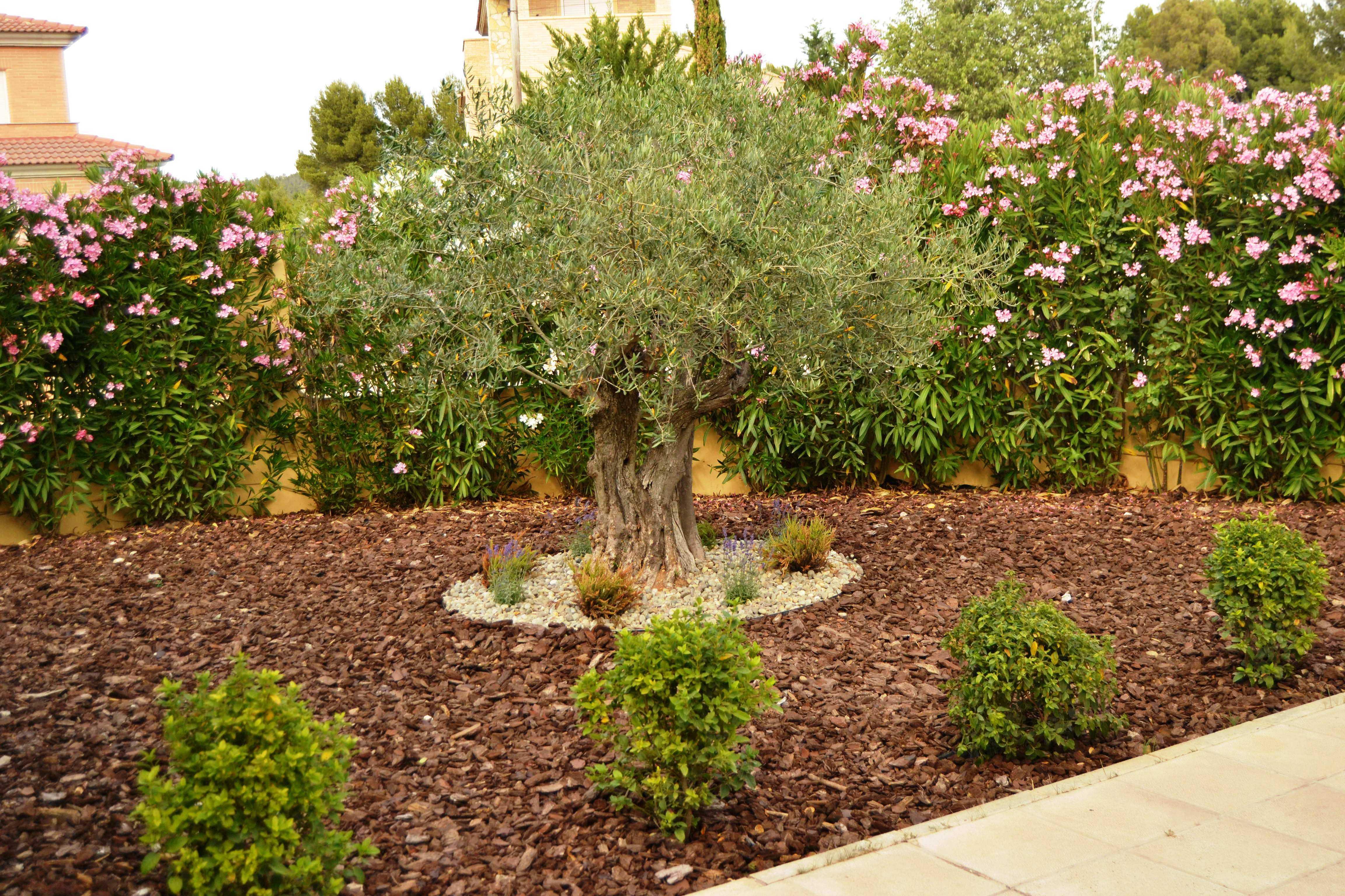 Jardín privado en Requena, Valencia.