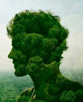 ''Biofilia: amor por lo que está vivo, por la Vida''