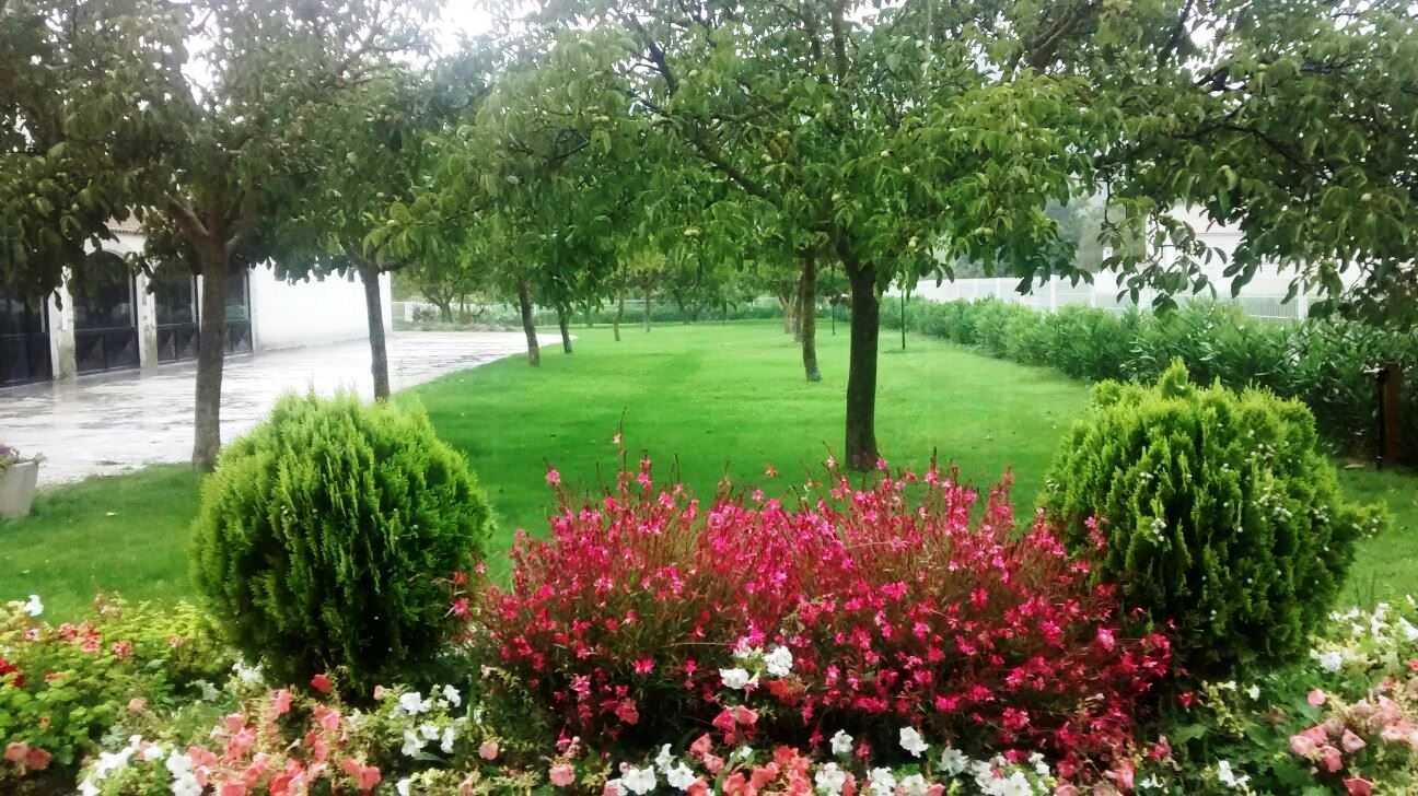 """Jardín privado. Albergue """"Casa Grande"""" (Utiel)(Utiel)"""