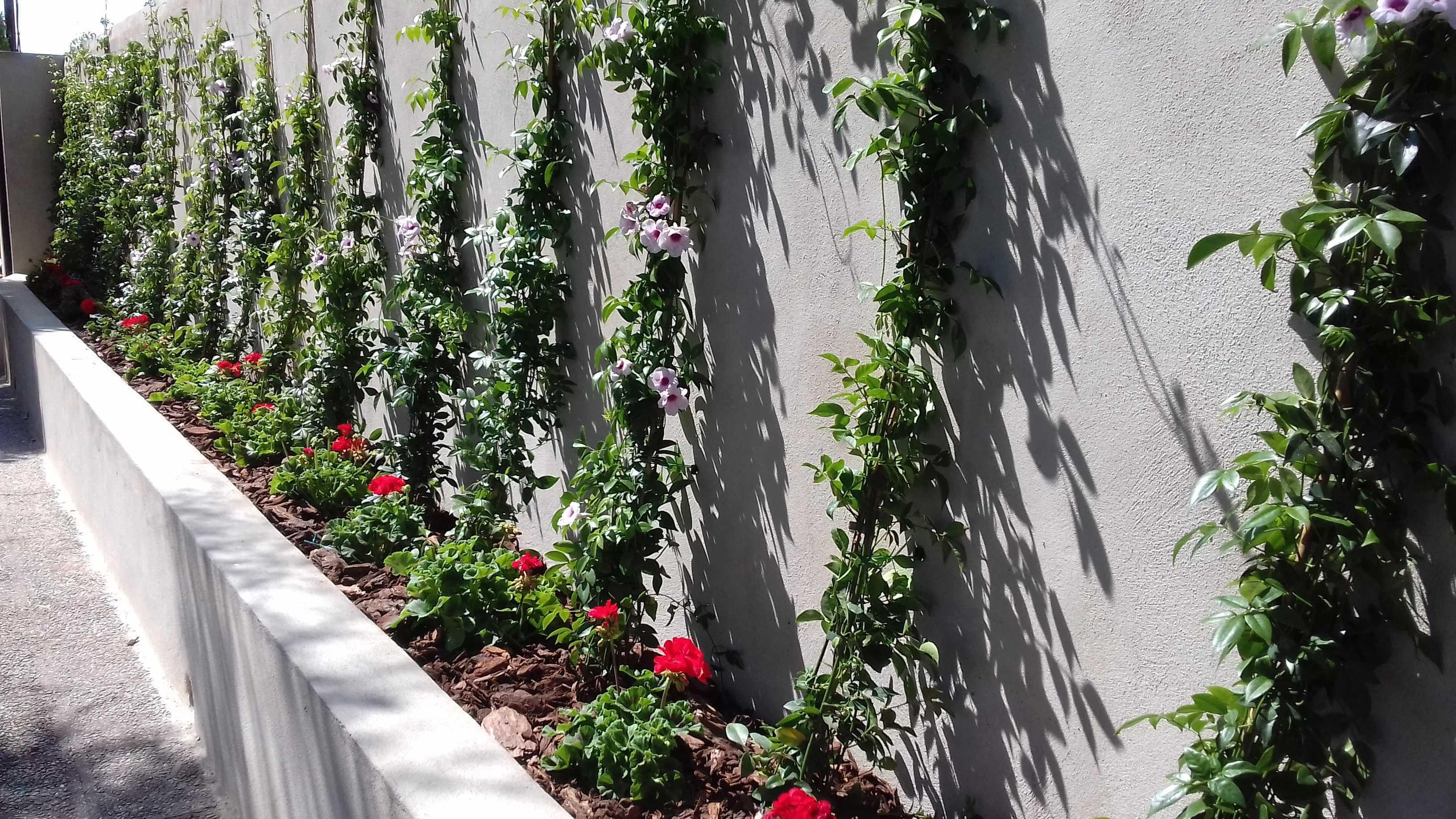 Jardín privado. La Pobla de Vallbona, Valencia.