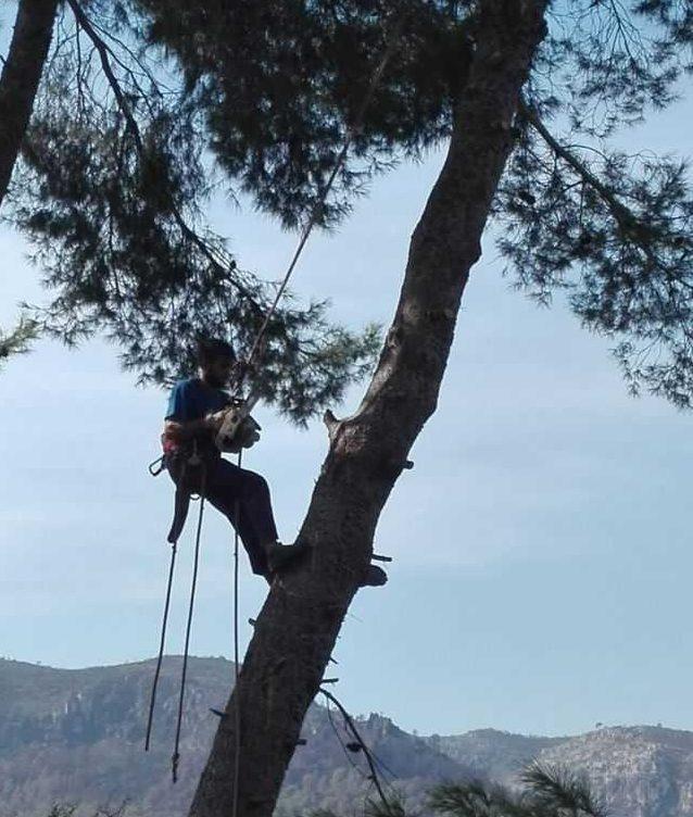 Mantenimiento de Espacios Naturales en Valencia