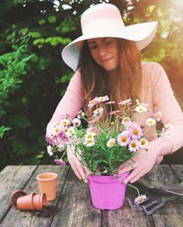 'Importancia del mantenimiento adecuado de jardines y espacios verdes'