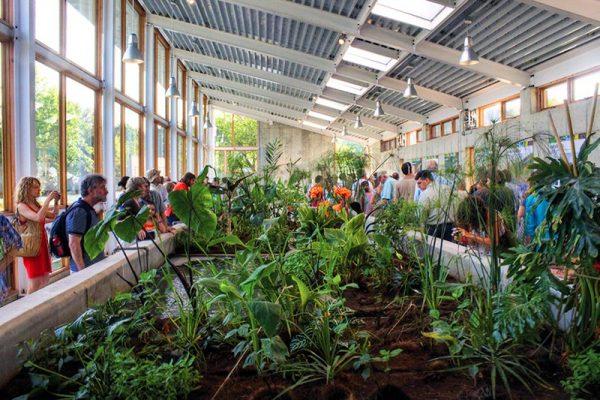 Cómo depurar el agua de forma eco-friendly imitando a la Naturaleza