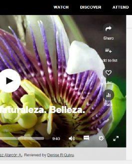 Las charlas TEDX que le gustan a Naturblanch Jardinería y Paisajismo