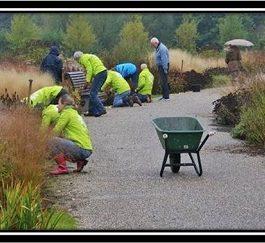 'Vlinderhof': jardines y huertos gestionados por la comunidad
